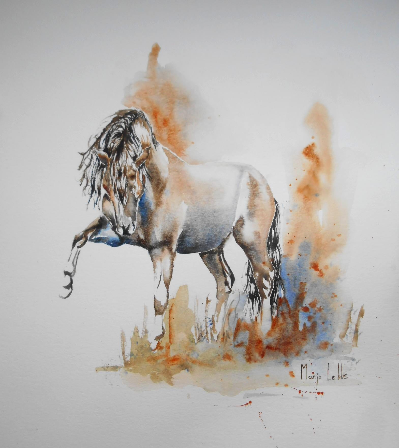 andalusian horse watercolor